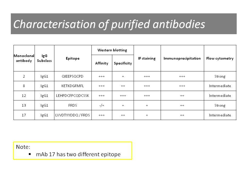 Properties of anti-c-Met [8]