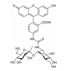 Image for Fluorescent Probe FITC-Trehalose Small Molecule (Tool Compound)