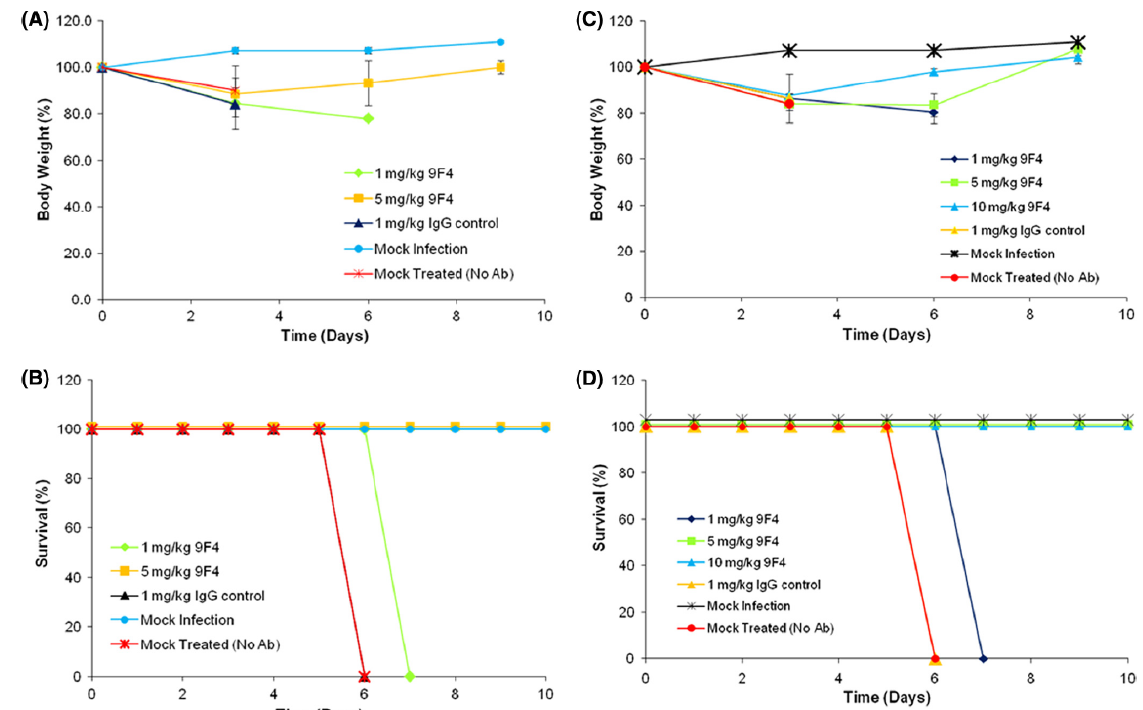 Prophylactic and therapeutic protection against H5N1 virus by anti-HA (H5N1) [9F4]. (A and B) To test for prophylactic efficacy, BALB/c mice were immunized either with anti-HA (H5N1) [9F4] at different doses, with an irrelevant IgG control MAb (1 mg/kg), or with PBS and were subjected to viral challenge 24 h later. A group of mice was mock infected. Mice were observed daily for disease and mortality and were weighed every third day until they had to be euthanized or until day 10 after challenge. (C and D) To test for therapeutic efficacy, anti-HA (H5N1) [9F4] was administered 24 h after viral challenge, and the mice were monitored as described above.